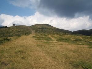 Poze din comuna Gura Teghii